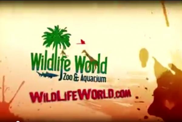 WildLife World Zoo Commercial